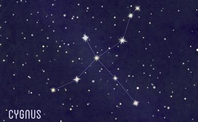 星の十字架