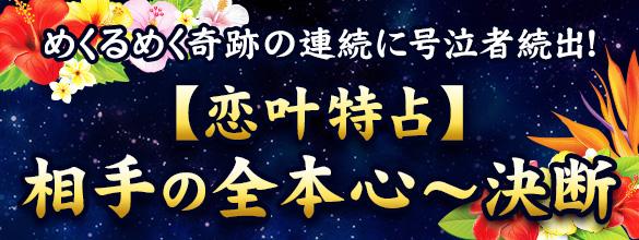 めくるめく奇跡の連続に号泣者続出!【恋叶特占】相手の全本心~決断(プレミアム占い)