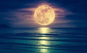 お月さまのメッセージ|9月13日「中秋の名月」、14日「ハーベストムーン」