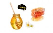 honey はちみつ
